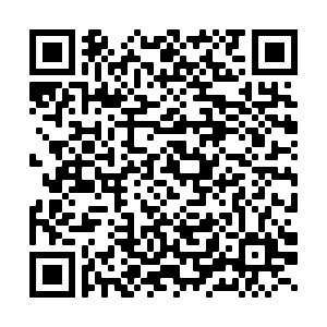 QR Code per scaricare l'APP